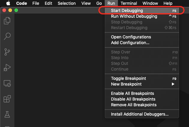 Start Debugging in VSCode